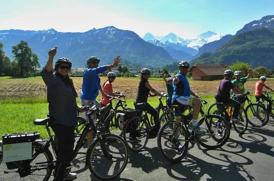 Interlaken 3-Hour Guided E-Bike Tour...