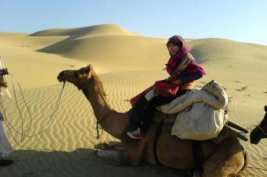 Full-Day Small-Group Camel Safari In...
