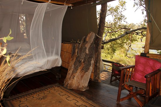 Delta Camp: tree house inside looking out, mosquito net only