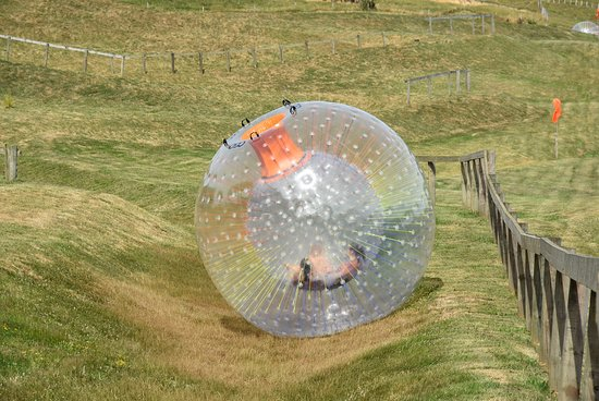 OGO Rotorua: Rolling Down the Hill