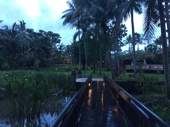 The Ubud Village Resort & Spa: photo1.jpg