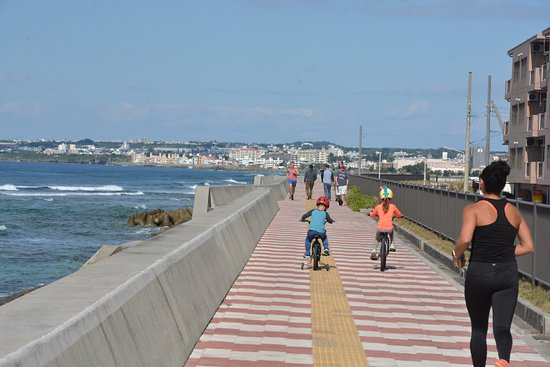 Miyagi Coast: 整備された堰堤は憩いの場所