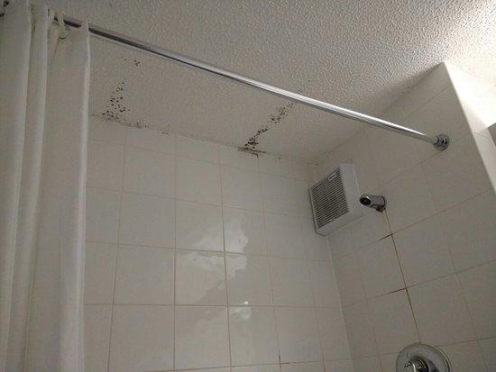 Days Inn Bradford M62: Mouldy bathroom