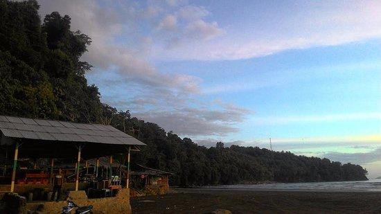 Air Manis Beach : Forest surrounding