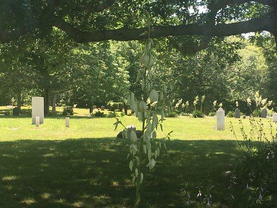 Mashpee, MA: Graveyard