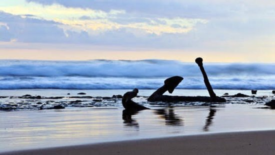 Great Otway National Park, Australia: Wreck Beach