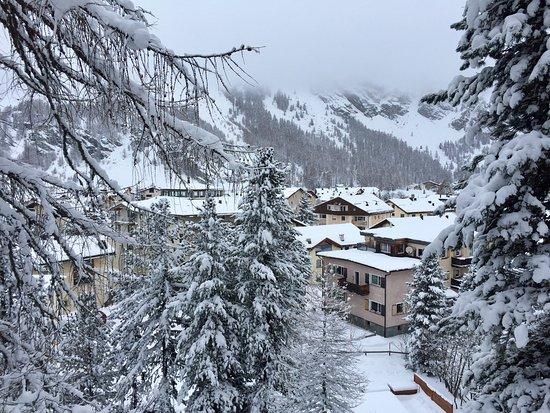 Sils im Engadin, Schweiz: Cervo
