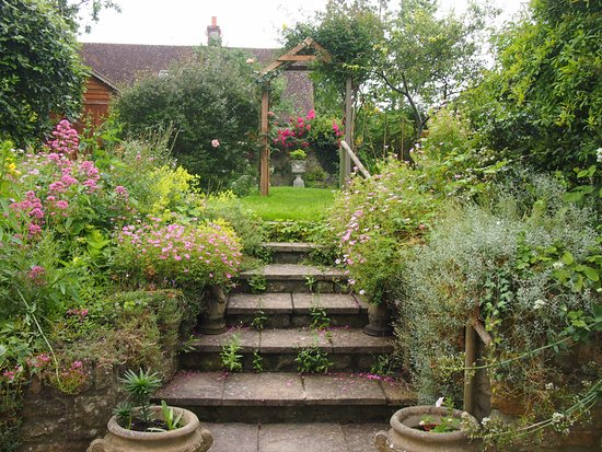 Enjoy a glass of wine in my sunny garden - Picture of Clare Cottage ...