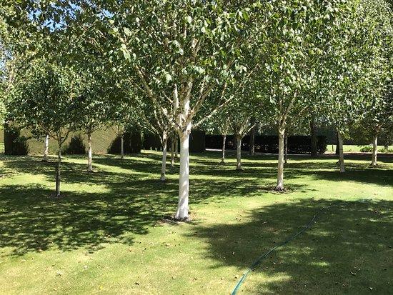 Trotts Garden: photo6.jpg