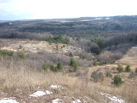 Boyne Valley Provincial Park: Looking southward from Murphy's Pinnacle