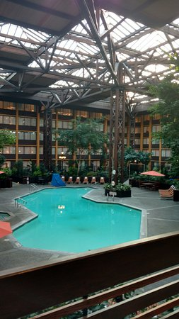 Seattle Airport Marriott Indoor Atrium And Pool
