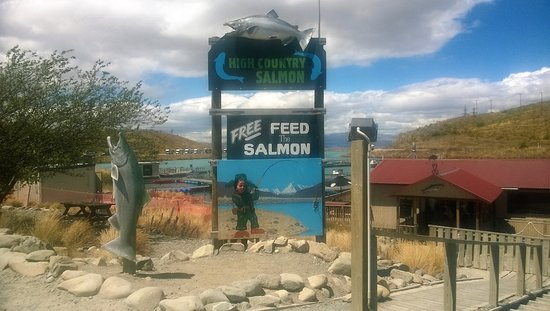 Twizel, New Zealand: High Country Salmon entry