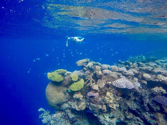 Ono Island Fiji Accommodation
