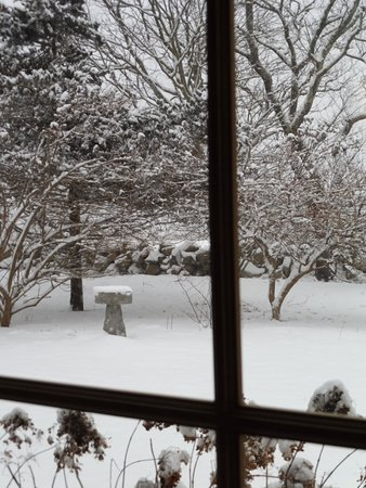 Wakefield, RI: Looking outside