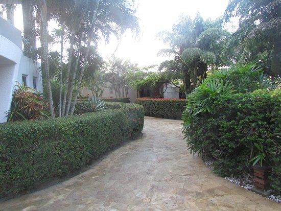 Mayan Princess Beach & Dive Resort: walk to beach, buffet