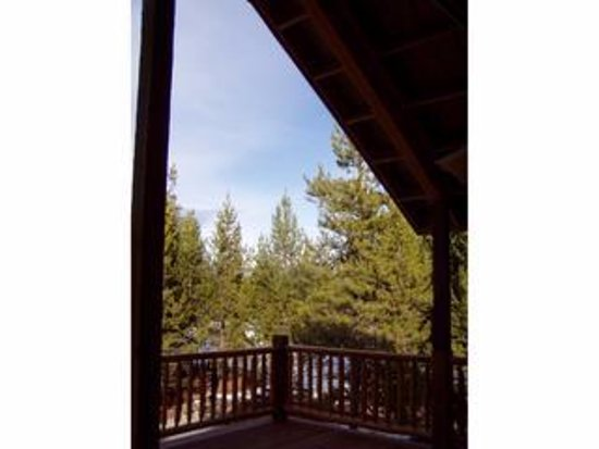 DiamondStone Guest Lodges: HS Treetop 2 Queen Suite view.