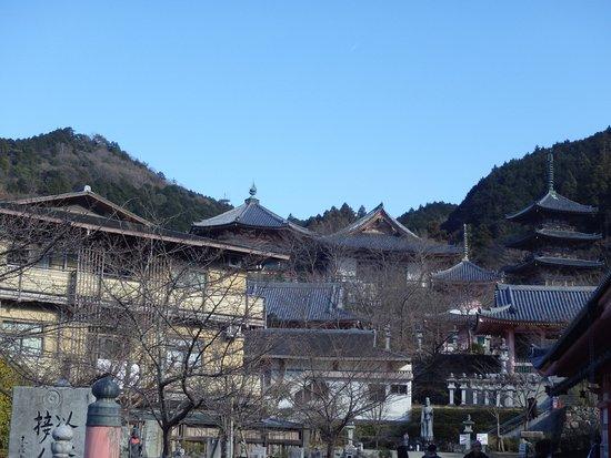 Takatori-cho, Japan: 寺院遠景