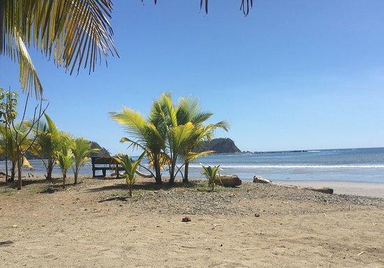 Fenix Hotel - On The Beach: photo0.jpg