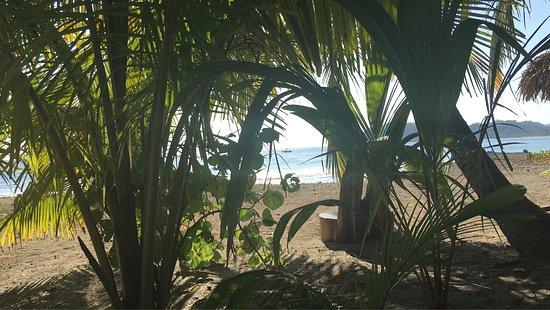 Fenix Hotel - On The Beach: photo1.jpg
