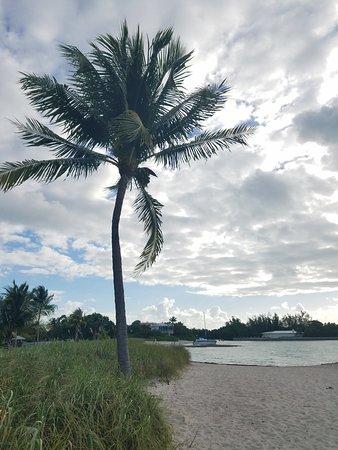 Sombrero Beach: lovely morning yoga on the beach