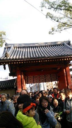 Nishinomiya Shrine: DSC_0815_large.jpg