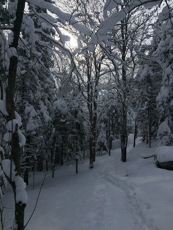 Notre Dame des Bois, Canada: photo8.jpg