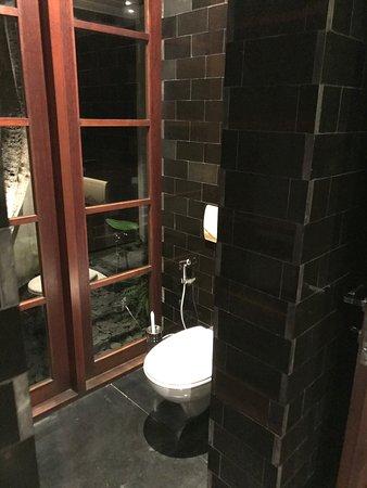 The Damai: toilet