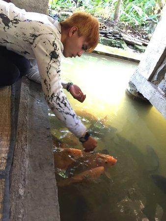 Sangkuriang Restoran: Masakan ikan air tawar,anekan sayuran,tahu nya enak,suasana yang nyaman sejuk