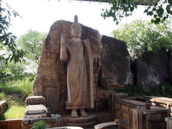 Северо-Центральная провинция, Шри-Ланка: Avukana Buddha Statue