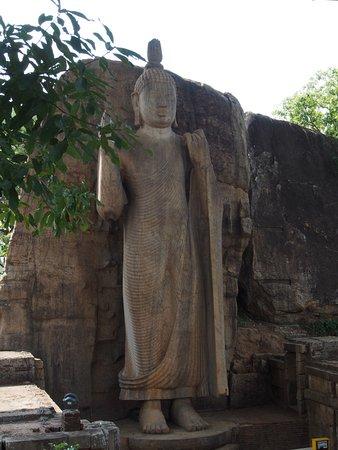 North Central Province, Sri Lanka: Avukana Buddha Statue