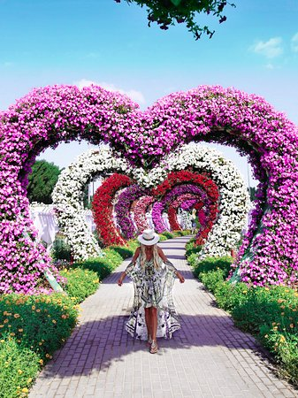 Dubái, Emiratos Árabes Unidos: Dubai Miracle Garden!