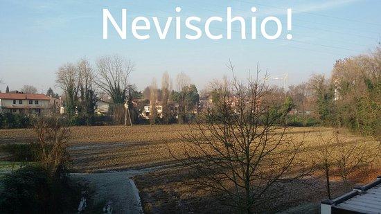 Silea, Italia: edited_20161210_101232_large.jpg
