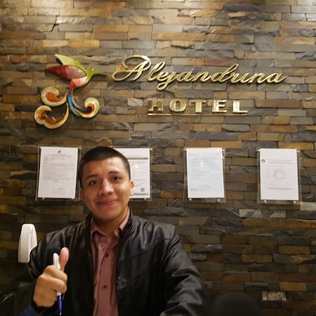 Alejandrina Hotel: Nice, comfortable and centrally located.  New and modern with parking.  We will stay there again