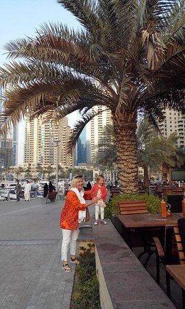 photo2 jpg - Picture of Gateway Hotel, Dubai - TripAdvisor