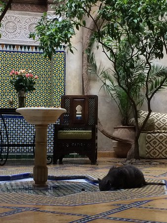 Riad Samsara: photo0.jpg