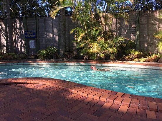 Sunshine Coast Motor Lodge : nice sized, clean pool