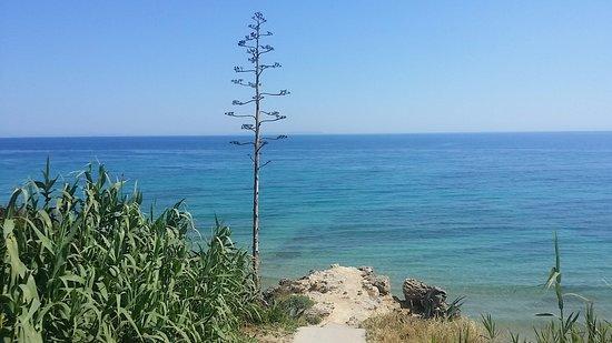 Playa Los Castillejos Frente A Mandala Bungalows Los Canos De Meca