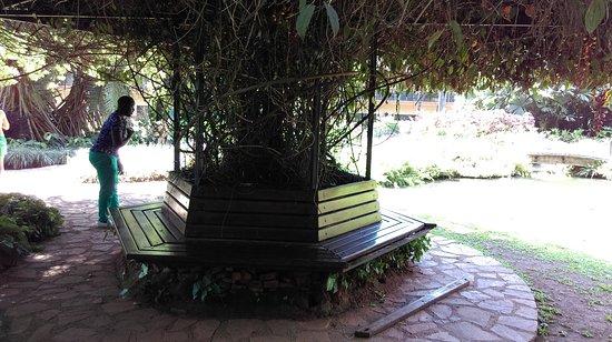 Munyonyo Commonwealth Resort: IMAG0191_large.jpg