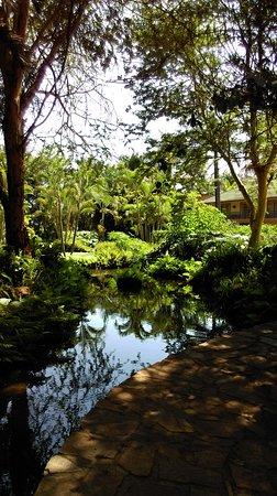 Munyonyo Commonwealth Resort: IMAG0190_large.jpg