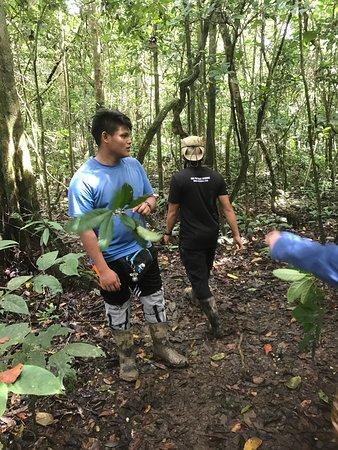 Sandakan Division, Malaysia: photo1.jpg