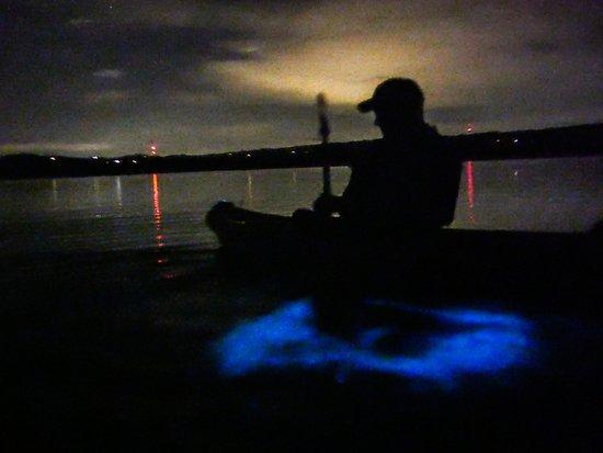 Taino Aqua Adventures