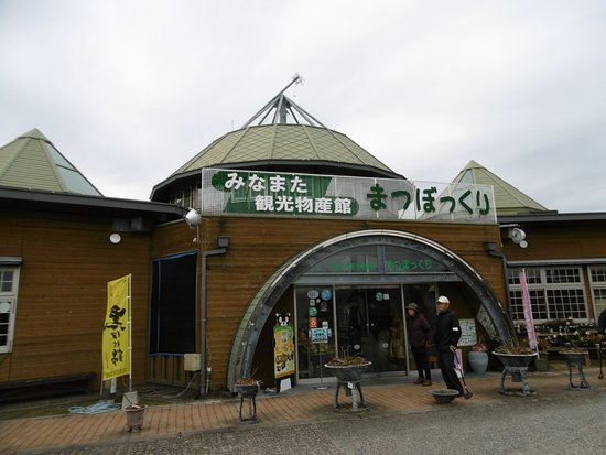 Minamata Restaurants