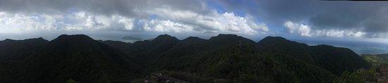 The Peak Forestry Reserve: photo6.jpg