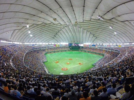 Afbeeldingsresultaat voor Tokyo Dome