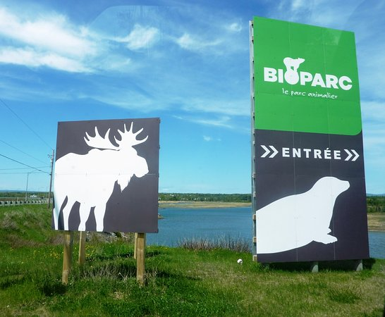 Bioparc Photo