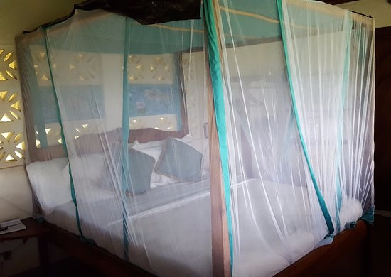 Totoco Eco-Lodge Aufnahme