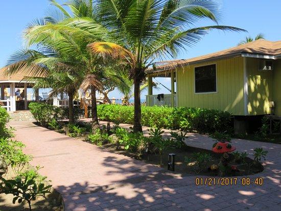海葡萄種植園渡假村照片