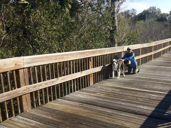 Wadsworth Park: Walking the dog