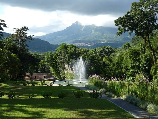 "Riviere-Salee, Martinique: Botanical Garden ""Domaine d'Emeraude"" and the Mont pelée View...."
