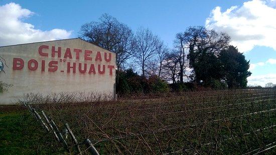 Chateau du Bois Huaut